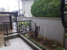 大阪市此花区の自宅 ダイスギ伐根前のお写真