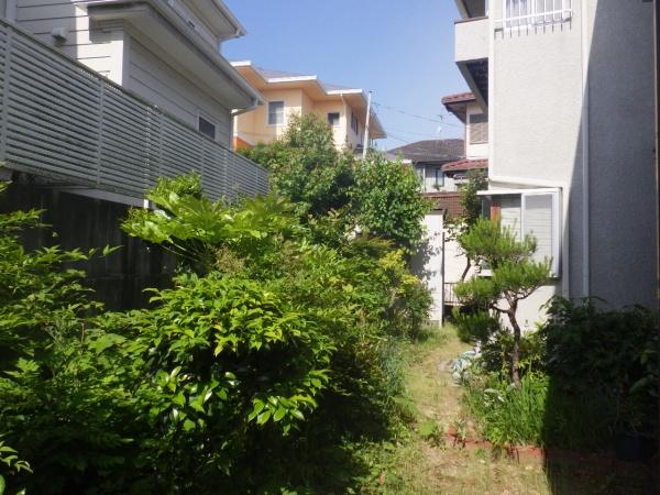 大阪市天王寺区の空き家の庭 剪定前