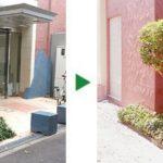 マンションのツゲとキンモクセイの剪定 大阪市東淀川区