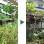 庭中に生えている雑草の草刈りとヒマラヤスギの剪定 大阪府高槻市