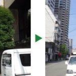 会社のシンボルツリーとして植えられたシラカシの剪定 奈良県奈良市