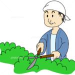 大阪植木剪定絵