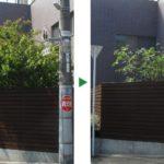 黒点病のヤマボウシの剪定と薬剤散布 兵庫県尼崎市